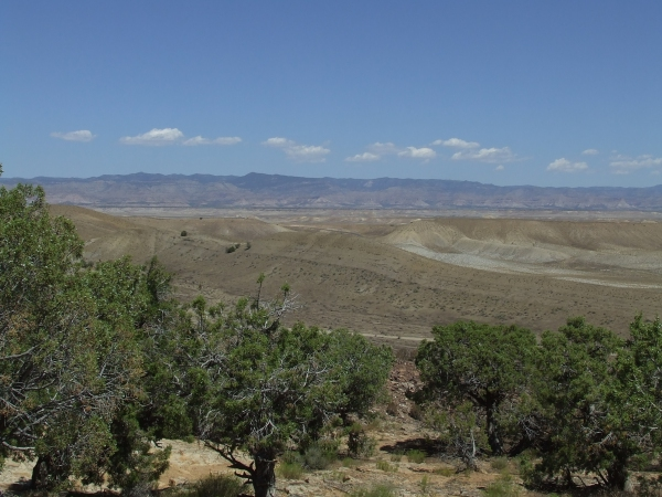 An expanse of hot, brown desert, with a few piñon trees.