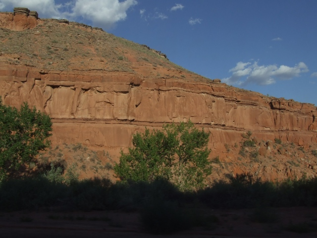 Red cliffs with green trees and blue sky and a dark shadowed foreground